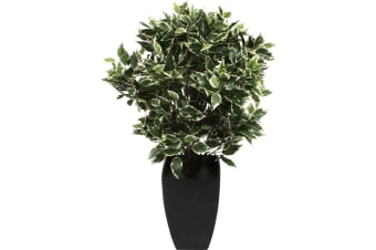 Artificial Ficus Tree in Pot 65cm FREIGHT