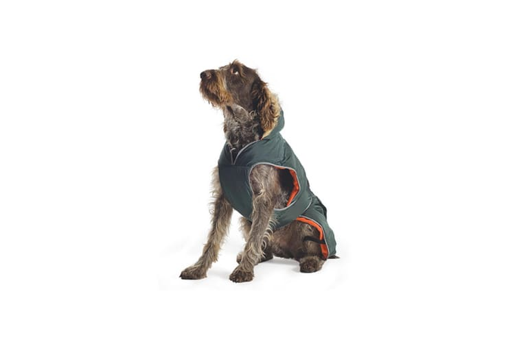 Ancol Pet Products Muddy Paws Showerproof Parka Dog Jacket (Green) (Small)