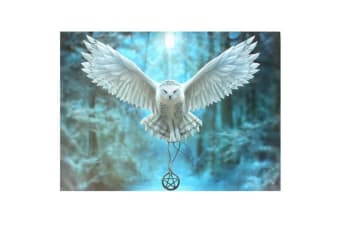 Anne Stokes Awake Your Magic Canvas Plaque (May Vary) (Large)
