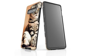 For Samsung Galaxy S10+ Plus Case  Armour Tough Cover  Sitting Cat