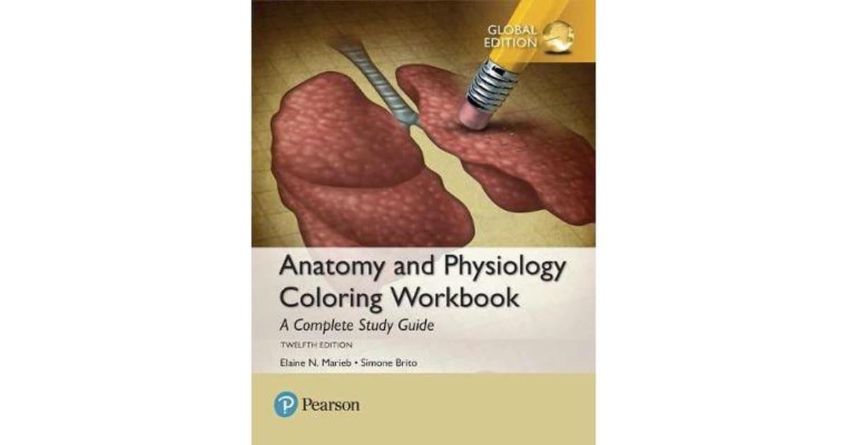Anatomy and Physiology Coloring Workbook - A Complete Study Guide, Global  Edition by Elaine N. Marieb | 9781292214146 | 2017 | Non-Fiction > Medicine  ...