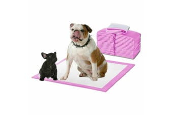 PawZ 200 Pcs 60x60cm Ultra Absorbent Puppy Pet Dog Cat Toilet Training Pads Pink Blue /Pink/Pink with Lavender Scent/White with Meadow Scent