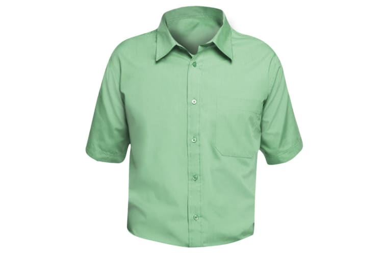 SOLS Mens Bristol Short Sleeve Poplin Work Shirt (Apple Green) (M)