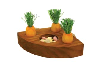 Rosewood Boredom Breakers Carrot Toy And Treat Holder (Orange/Brown)