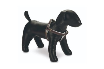 Beeztees Designed By Lotte Nylon Virante Dog Harness (Brown)