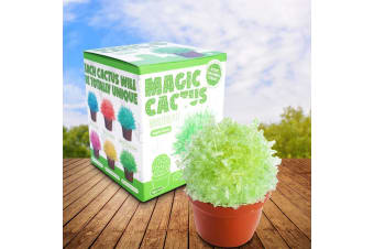Magical Glittering Crystal Cactus Grow Kit | Fully Grown in 24 Hours!