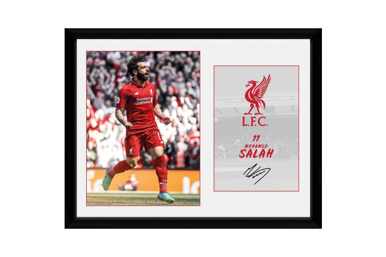 Liverpool FC Salah 16 x 12 Picture (Multicoloured) (One Size)