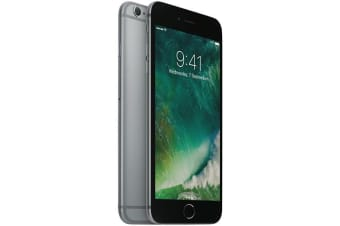 Used as Demo Apple Iphone 6 64GB Space Grey (Local Warranty, 100% Genuine)