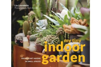 My Tiny Indoor Garden - Houseplant heroes and terrific terrariums in small spaces