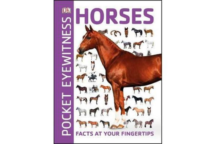 Pocket Eyewitness Horses - Facts at Your Fingertips