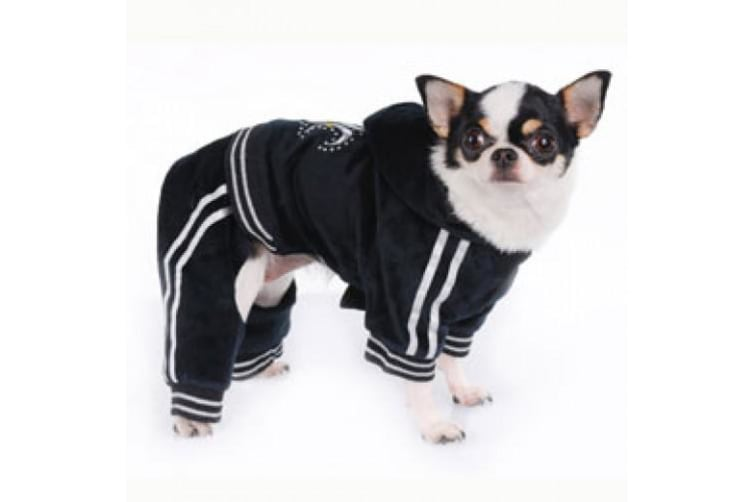 Pooch OutFitters Tristan Dog Jumper (Black/White) (XSmall)