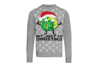 Christmas Shop Adults Unisex Sprouts Christmas Jumper (Grey) (2XL)