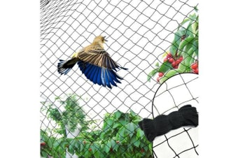 4GSM Commercial Fruit Tree Plant Knitted Anti Bird Netting 10x10m