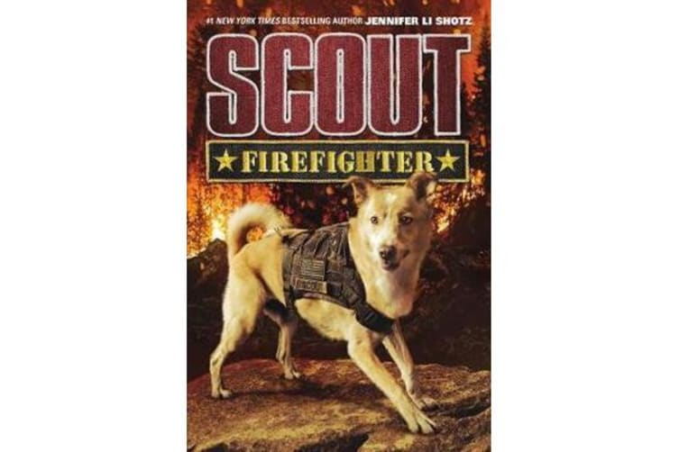 Scout - Firefighter
