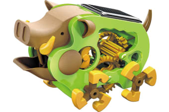 Solar Powered Wild Boar Kit ideal for a do-it-yourself science fair after-school or summer workshop project