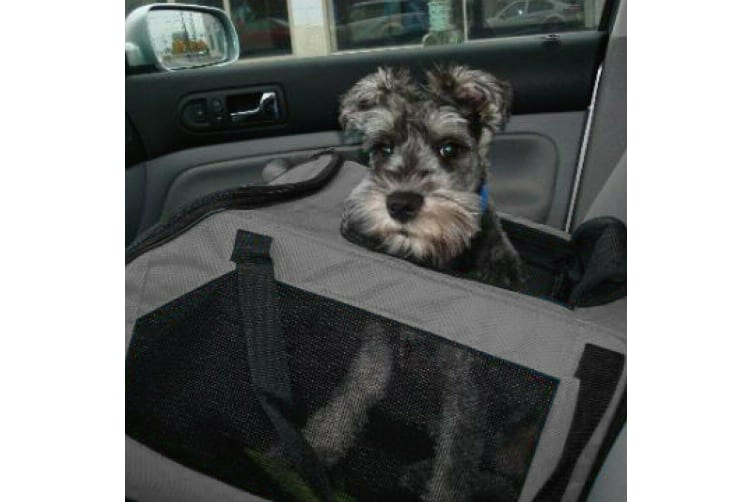 2-in-1 Pet Car Seat Carrier Dog Cat Booster Soft Crate Travel Puppy Bag Portable