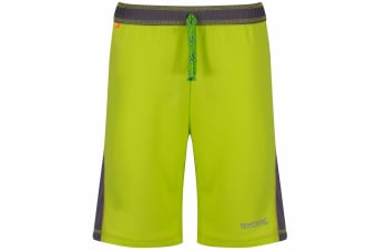 Regatta Great Outdoors Childrens/Boys Resolver Quick Drying Shorts (Lime Zest/Dust) (7-8 Years)