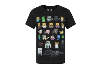 Minecraft Official Boys Sprites Characters T-Shirt (Black)