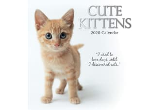 Cute Kittens - 2020 Premium Square Pets Wall Calendar 16 Months New Year Gift