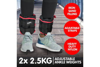 2x 2.5kg Adjustable Ankle Exercise Running Weights Wrist - Red