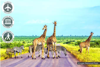 AFRICA: 20 Day Amazing Africa Tour Including Flights for One or Two