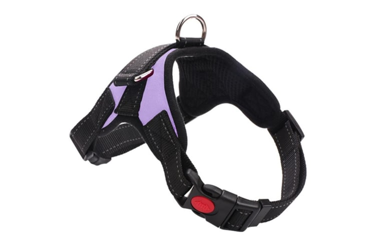 Dog Chain Explosion-Proof Breasted Strap For Walking Dog Leash - 6 Purple Xl