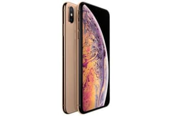 Apple iPhone XS Max 4G LTE (64GB, Gold) - Used as Demo