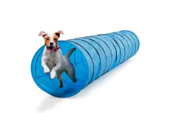Pawever Pets Training Tunnel