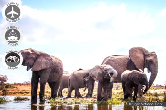 SOUTH AFRICA: 22 Day Cruise & Safari Package Including Flights for Two