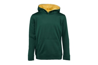 Champion Boys' Solid Performance Pullover Hoodie (Green, Size L)