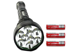 Raylight Flashlight 9 LED CREE XM-L T6 Torch Lamp Light 18650 Batteries Elinz