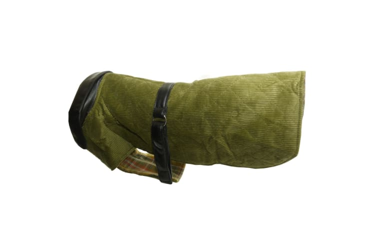 Vital Pet Products Corduroy And Leather Dog Coat (Green) (22in)