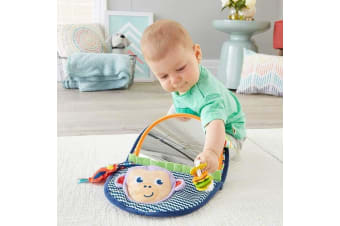 Fisher Price Monkey Mirror