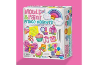 Mould & Paint Fridge Magnets Kit