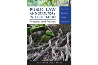 Public Law and Statutory Interpretation - Principles and Practice