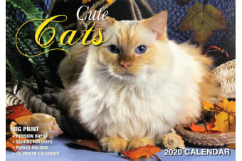 Cute Cats - 2020 Rectangle Pets Wall Calendar 16 Months New Year Xmas Decor Gift