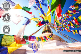 NEPAL: 10 Day Best of Nepal Tour