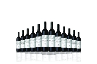 12 Bottles of 2013 The Vault Shiraz 750ML