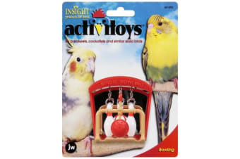 Bowling Bird Toy with Mirror for Small Birds by JW Insight