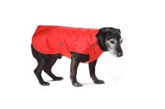 Cosipet Lined Dog Rain Coat (Red) (30in)