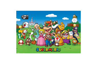 Super Mario Characters Poster (Multicoloured)
