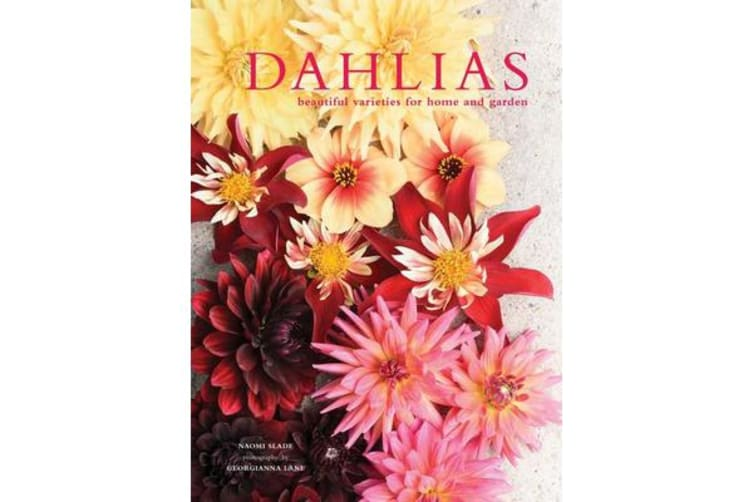 Dahlias - Beautiful varieties for home and garden