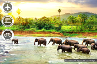 SRI LANKA: 9 Day Best of Sri Lanka Tour Including Flights for Two