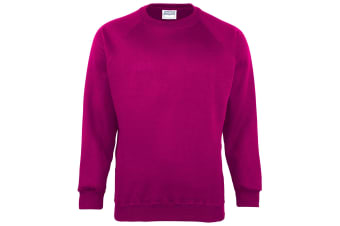 Maddins Kids Unisex Coloursure Crew Neck Sweatshirt / Schoolwear (Raspberry) (24)