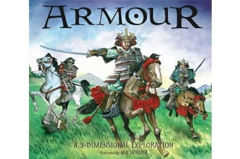 Armour - A 3-dimensional Exploration
