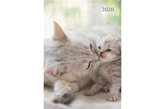 Cats & Kittens - 2020 Premium Pets Animal Diary Planner A5 Padded Cover New Year
