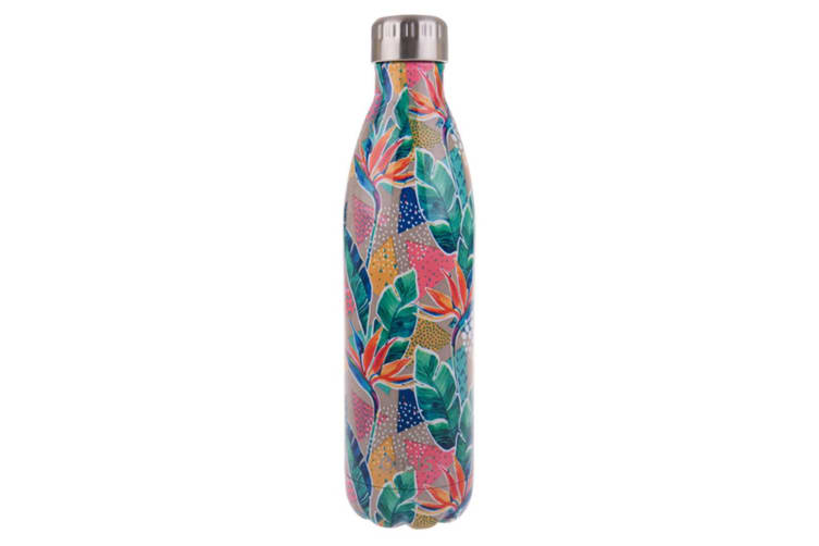 Oasis 500ml Stainless Steel Double Insulated Dreamtime & Botanical Bottle Pack