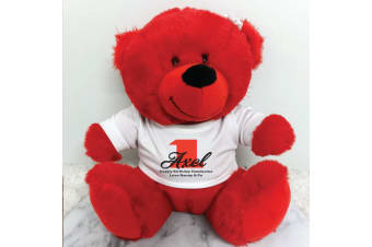 Personalised 1st Teddy Bear Red Plush