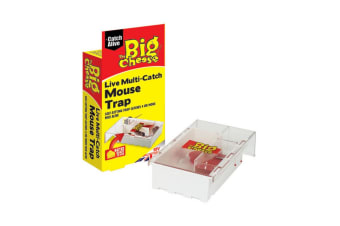 STV International The Big Cheese Live Multi-Catch Mouse Trap (May Vary) (Small)
