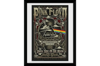 Pink Floyd Rainbow Theatre Framed Poster (Black/White)